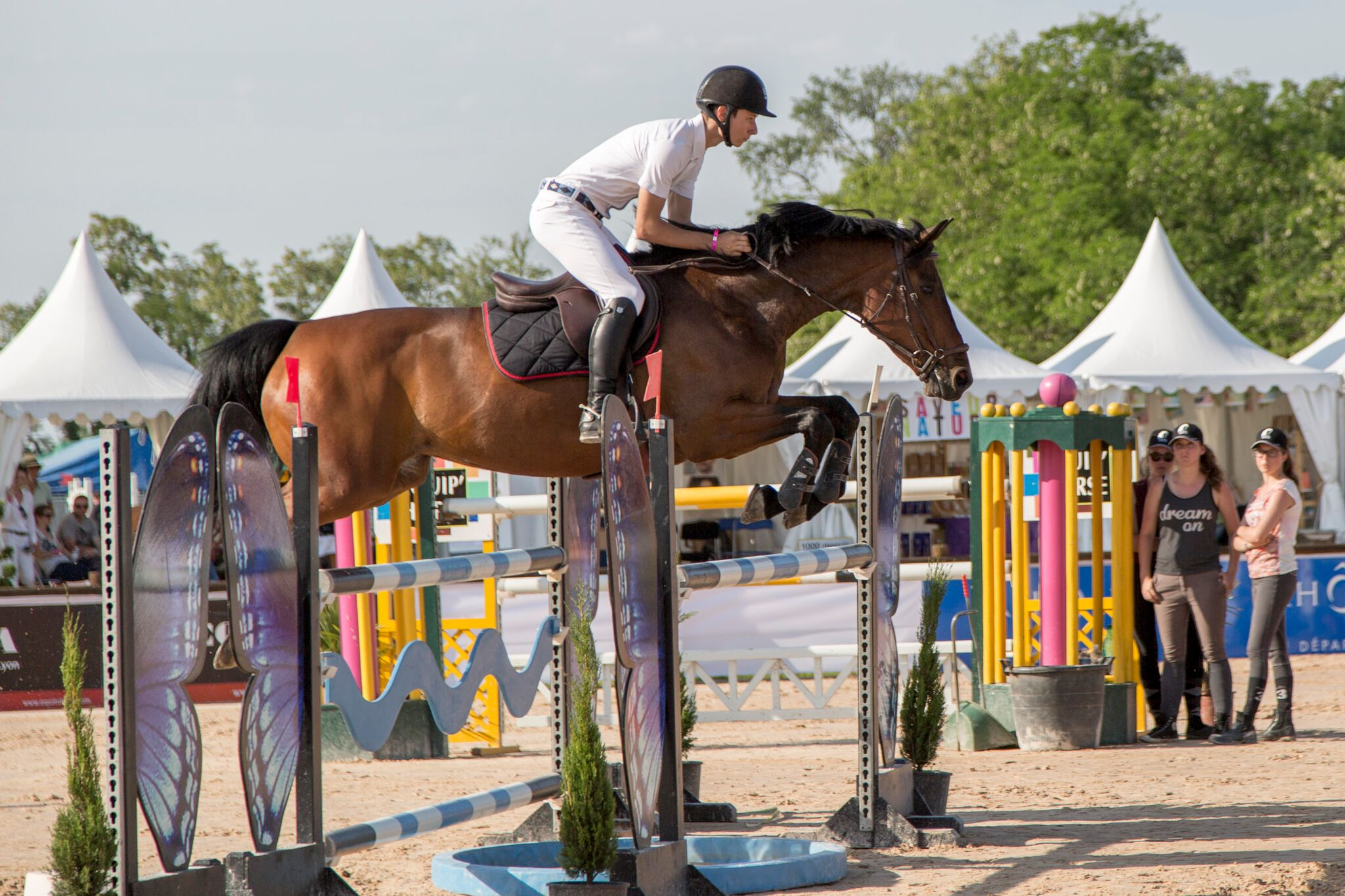 GOLDEN ROCK JUMP CSI**